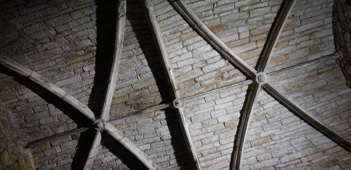 Linlithgow Palace Ceiling