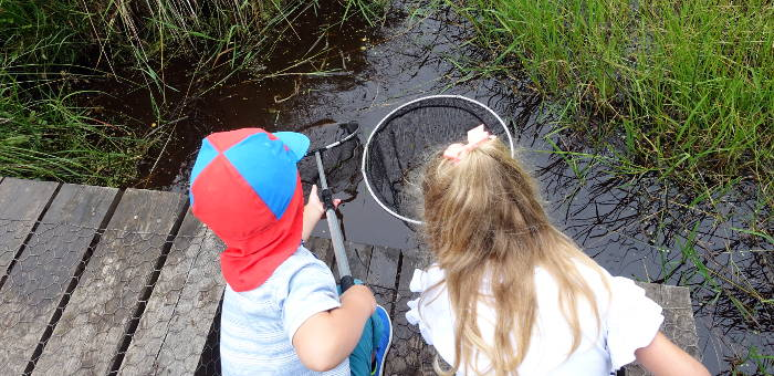Two children pond dipping with nets